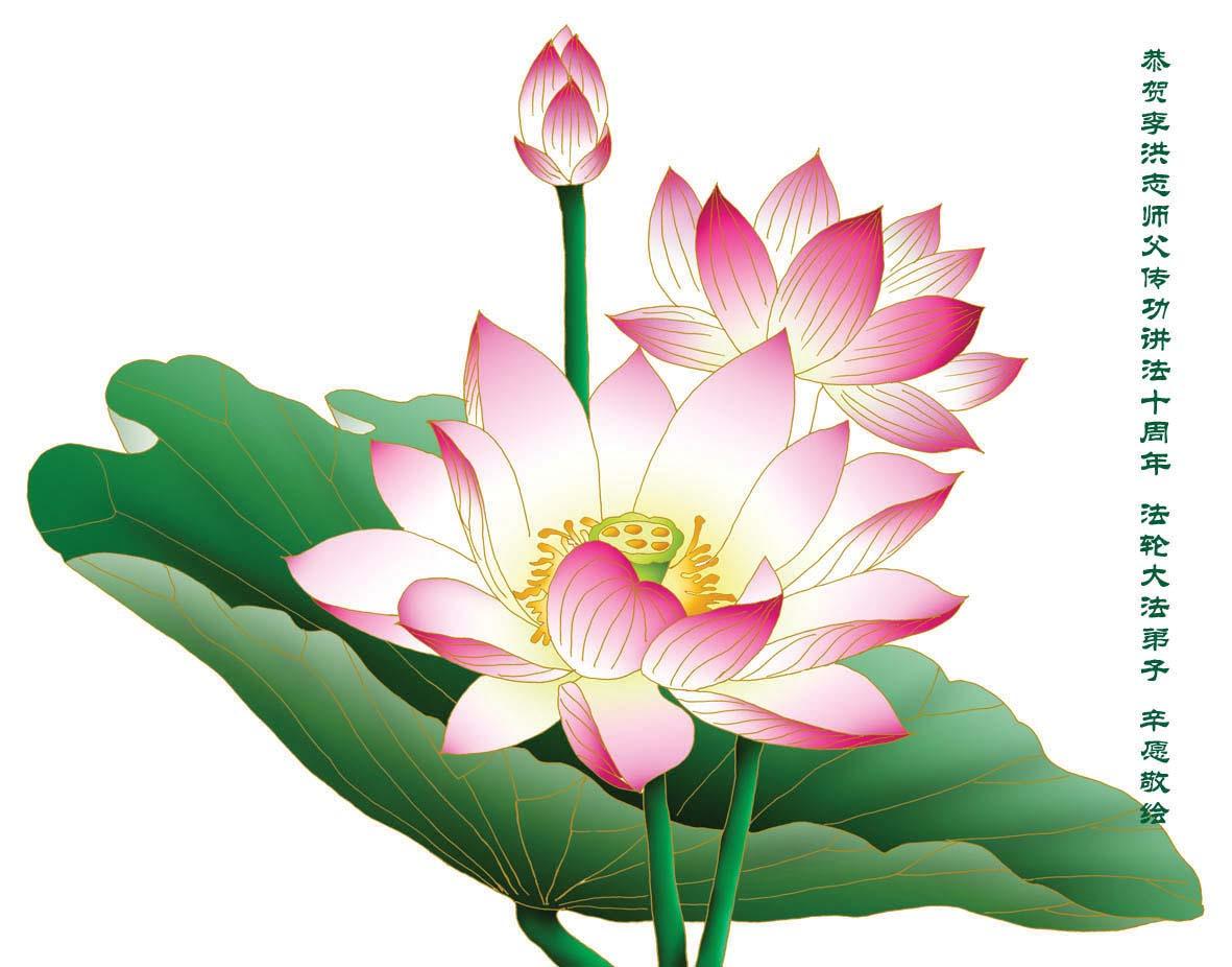 Clearwisdom selected photos graph lotus lotus flower izmirmasajfo