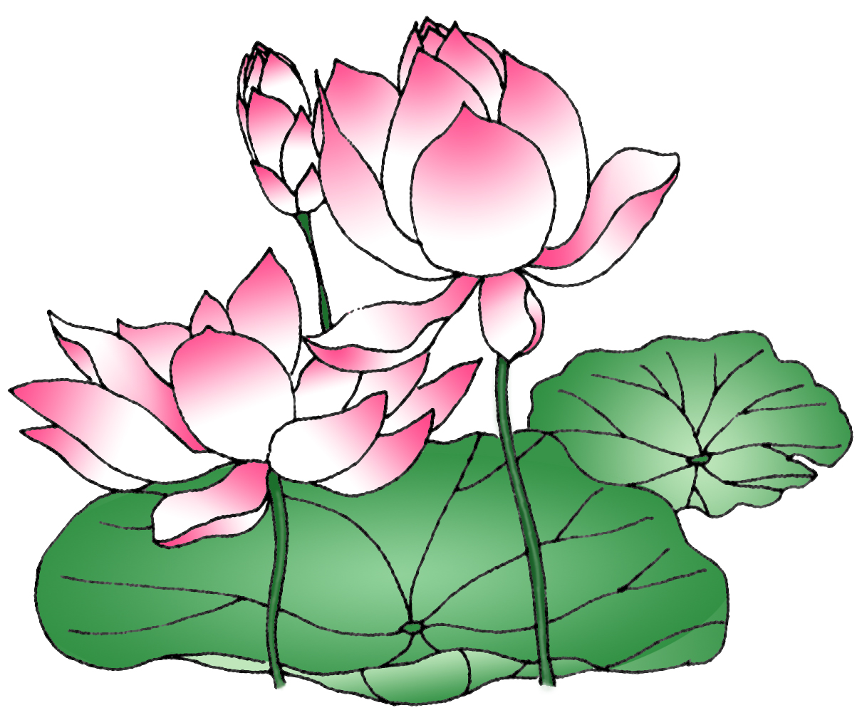 Clearwisdom Selected Photos Graph Lotus
