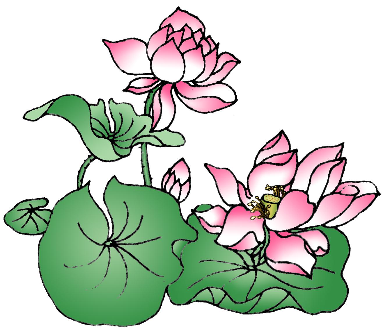 Clearwisdom photo archive art design lotus 524kb izmirmasajfo